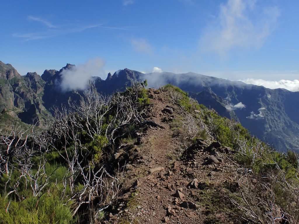 PR1.3 Trail between Pico Ruivo and Encumeada